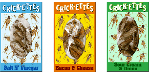 CRICKETTES_05122014-500x500.png