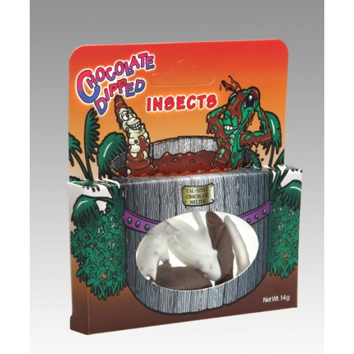IMG_1875_Choc_Insect_box_low res-500x500.jpg